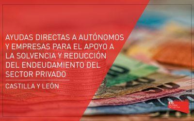 Ayudas directas a autónomos y empresas para el apoyo a la solvencia y reducción del endeudamiento del sector privado